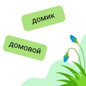 Различаем формы слова и родственные слова